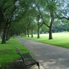 Fawkner Park フォークナーパーク