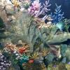 Melbourne Aquarium メルボルン水族館