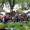 Melbourne International Flower & Garden Show メルボルンインターナショナルフラワー&ガーデンショー