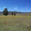 Namadgi National Park Yankee Hat マナジ国立公園ヤンキーハットウォーク